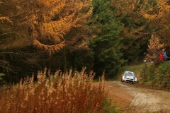 VW-WRC-2013-13-RM07-105358